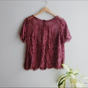 Gorgeous Lace Blouse